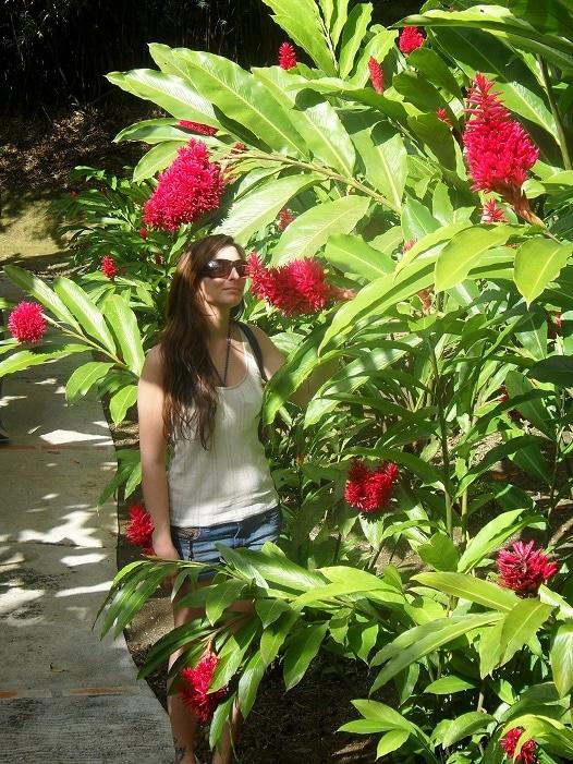 Jardin botanique de Balata en Martinique